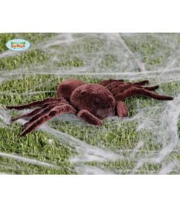 Araña Tarantula 25 cm