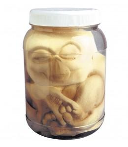 Tarro con Embrion Alien