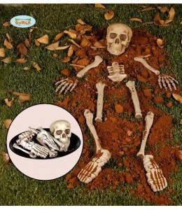 Bolsa de Huesos 12PCS