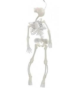 Esqueleto 33 cm