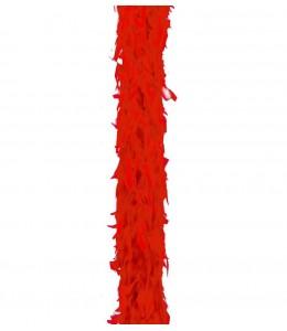 Boa Pluma Roja