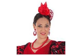 Flamencos y toreros