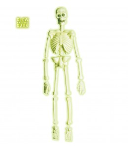 Esqueleto 90 cm Fosforescente