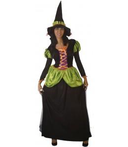 Disfraz de Bruja Verde Largo