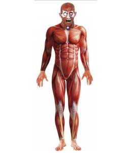 Disfraz de Anatomy Man