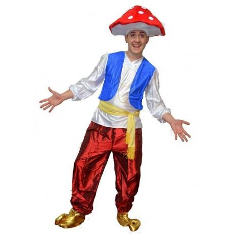 costume mushroom
