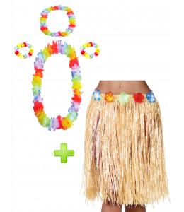 Disfraz Hawaiana Paja