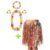 Conjunto Hawaiana Multicolor