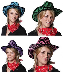 Sombrero Cebra Colores