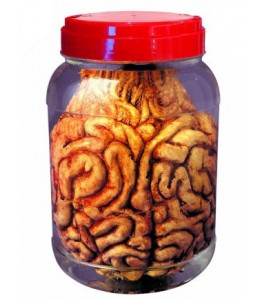 Tarros de Laboratorio Cerebro