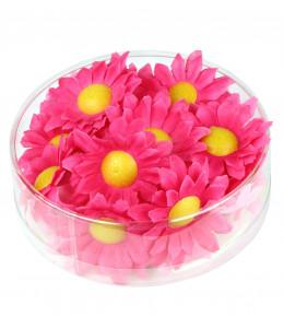 Flores Margaritas Fucsias Decorativas