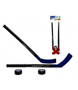 Stick de Hockey