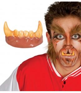 Dentadura con Hombre Lobo