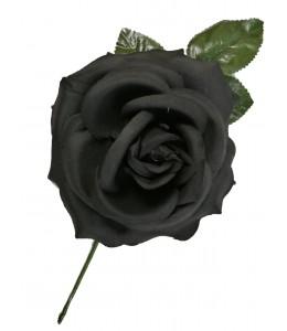 Flor Gande Negra