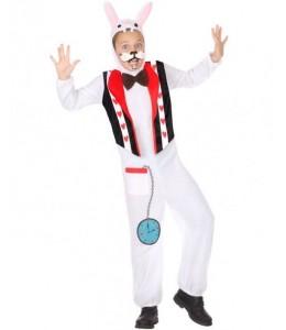 Costume Rabbit of Alice