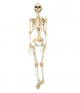Esqueleto de 90cms