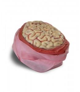 Venda con Cerebro