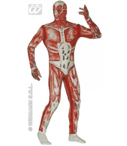 Disfraz de Anatomic Man