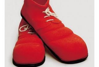 Zapatos y Cubrezapatos